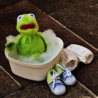 半身浴 をするカエル