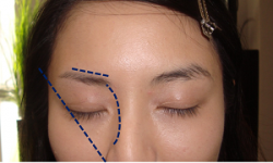 3点を意識して眉毛の位置を確認