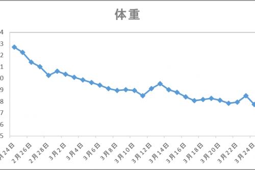 体重変化グラグ
